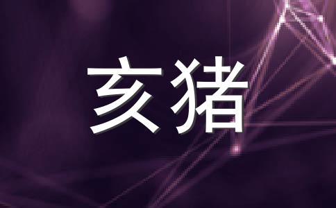 生肖猪2012年6月桃花运势
